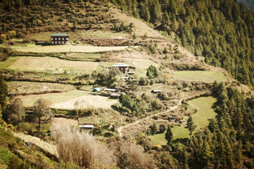 essay about my country bhutan All of you would know that gross national happiness (gnh) is the development  philosophy of my country, bhutan before i move on to talk.