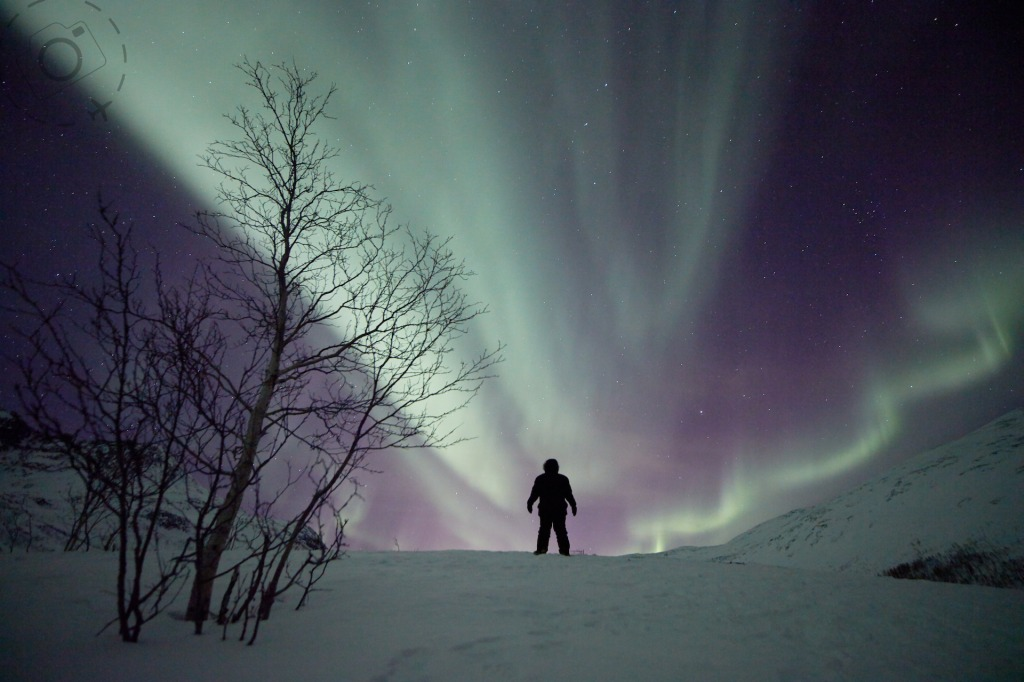 Arctic Norway Photography Tour - Booking Form