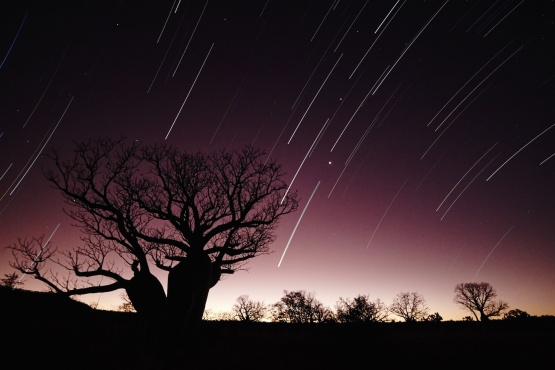 Star Trails at Sunset