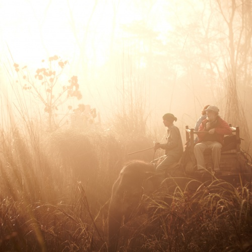 Chitwan | Photo Essay