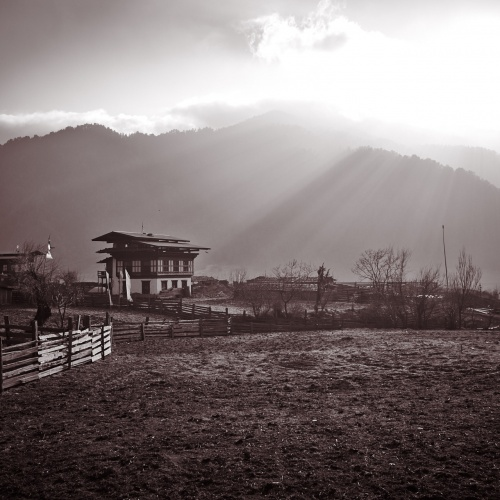 Winter in Gangtey | Photo Essay